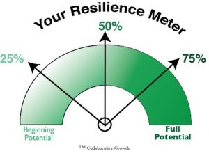 Manage Your Resilience Meter: Your Guide to Positivity, Productivity and Well-Being